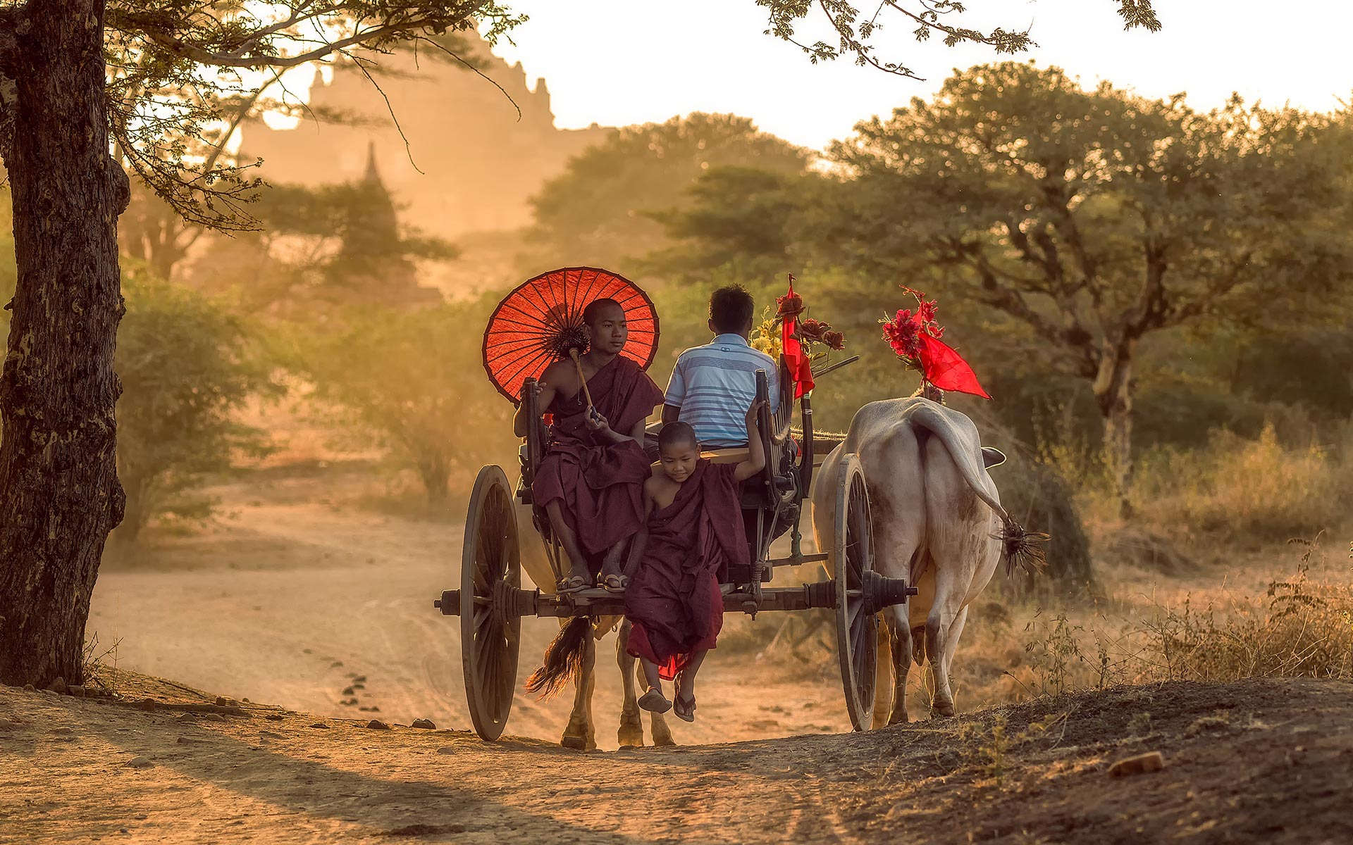 horse cart in Myanmar